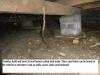 Termite mud lead
